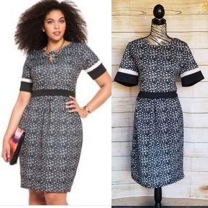 NWOT Eloquii- black and white career dress size 16